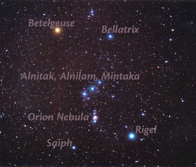 The star of orion picture by spinelli labeling by paul kohlmiller